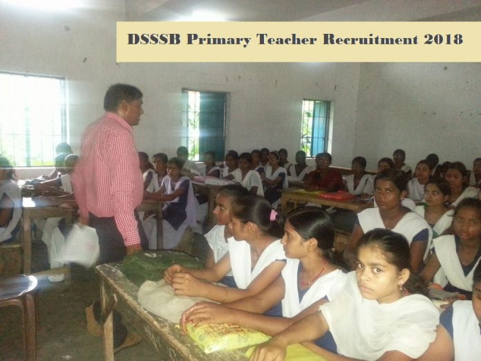 primary teacher recruitment